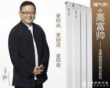 各国暖气片品牌之争 国产品牌占主导地位