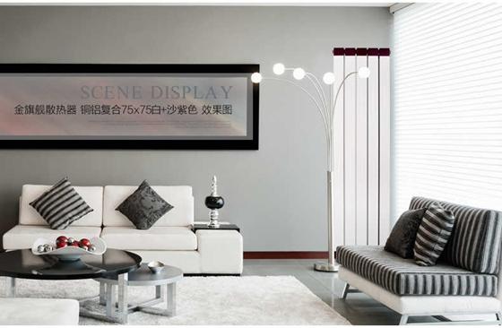 北京暖气品牌
